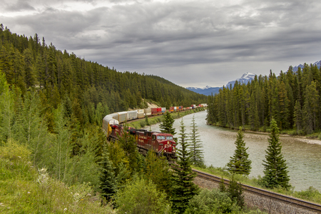 canadian pacific: Canadian Pacific Freight Train Travelling Through the Bow Valley - Banff National Park, Alberta, Canada Editorial