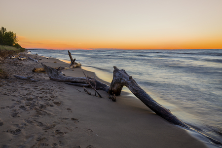 pinery: Driftwood on a Lake Huron beach after sunset - Pinery Provincial Park, Ontario, Canada Stock Photo