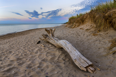 pinery: Driftwood on a Lake Huron Beach at Twilight - Pinery Provincial Park, Ontario, Canada Stock Photo
