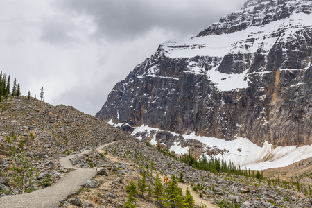 national scenic trail: A hiking trail winds through the treeline in the  Rocky Mountains - Jasper National Park, Alberta, Canada Stock Photo