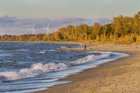 clean energy: Woman walking her dog on a Lake Huron beach with wind turbines in background - Grand Bend, Ontario, Canada