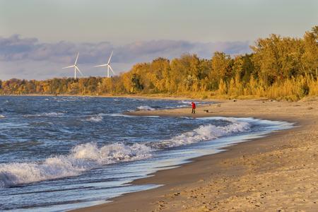 Donna che cammina il suo cane su una spiaggia del Lago Huron con turbine eoliche in background - Grand Bend, Ontario, Canada