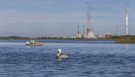 Brown Pelican and kayaker with a coal-fired power plant in the background - Crystal River, Florida 免版税图像