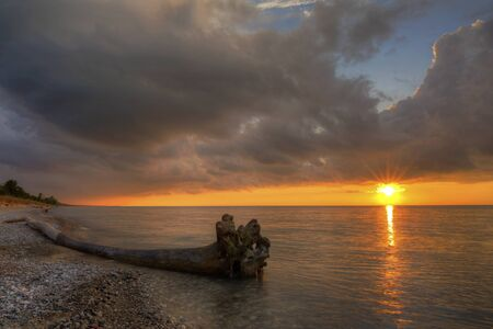 Driftwood on a Lake Huron Beach at Sunset - Pinery Provincial Park, Ontario, Canada