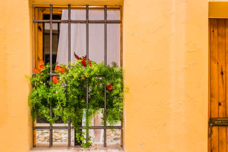 weeds: A window on yellow painted wall fenced by grey iron grating: white vase with fake plastic green weeds and red poppy hanging down