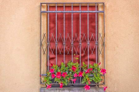 A window with dark red fabric curtain fenced by grey iron grating: a vase with fuchsia petunias flowers hanging down photo