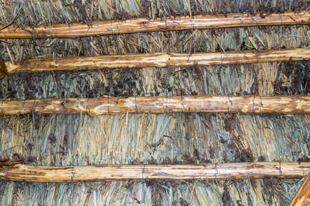 pitched roof: Typical Traditional country huts diffused until last century in Northern Italy region, Emilia Romagna.  Made with 5 marsh plants: common reed, lesser bulrush, sedge, bulrush and sharp rush