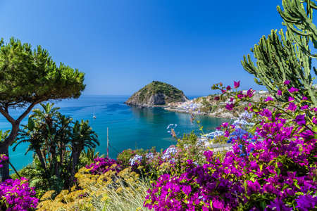 A view of SantAngelo in Ischia island in Italy: Tyrrhenian sea, bougaiunvillea glabra, rocks,  water, umbrella, sand and old typical houses in the island in front of Naples in Campania region in a sunny day Imagens