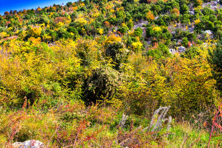 apparition: Views in Mount Podbrdo, the  Apparition hill overlooking the village of Medjugorje in Bosnia &  Herzegovina
