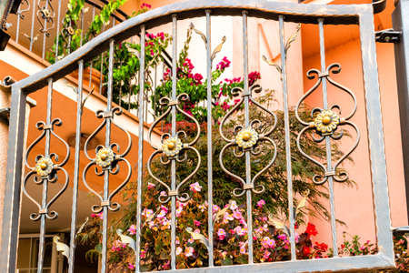 iron gate: Dark iron grated gate with metal fake flowers similar to daisies and real flowers of Impatiens Stock Photo