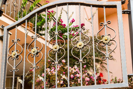 impatiens: Dark iron grated gate with metal fake flowers similar to daisies and real flowers of Impatiens Stock Photo