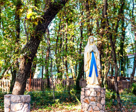 Mother Mary: Statue of the Blessed Virgin Mary among ivy covered trees. Green weeds and grey rocks in a garden of Medjugorje
