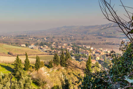 olive groves: Country village in cultivated fields in winter sunny day in Northern Italy: hills covered with olive groves and vineyards