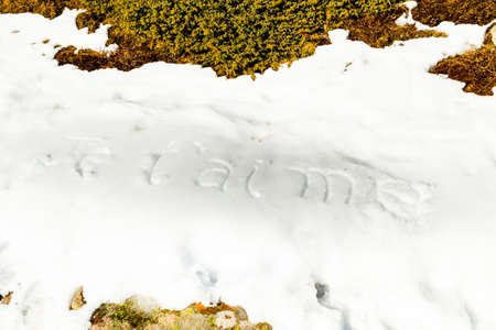 weed block: Je t'aime, French sentence written in capital letters on frozen white snow while brown weeds and moss in the foreground