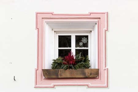 simple border: Squared glass window with pink frame and simple border with plant and flower pot