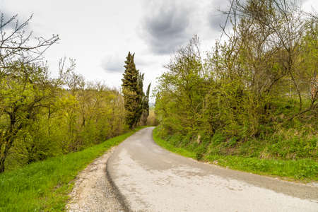 disappears: The serenity of a country road that disappears into the horizon in the middle of cultivated fields during spring