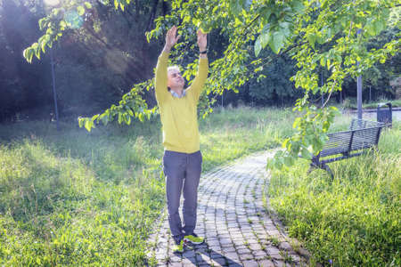 reassuring: Handsome middle-aged man with salt pepper hair, medium hair, dressed in casual clothing with yellow sweater, slacks blue and yellow sneakers in green outdoors: he shows a reassuring look raising arms to leaves Stock Photo