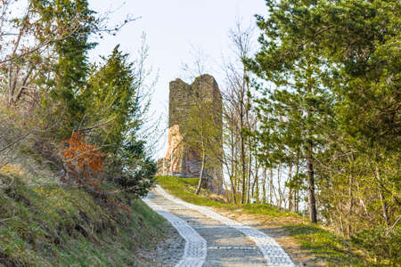 bordered: The way of nature on a path bordered by stones in the trees on the hills of Northern Italy
