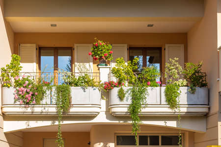 petunias: window with irong grating and flower pots: red and pink geranium, white  petunias