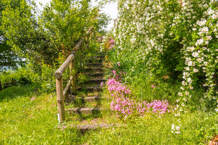 enchanting: stone steps in the midst of fuchsia and white flowers and lush plants with vivid green leaves leading to the ruins of an ancient Italian fortress in an enchanting atmosphere of historical memories