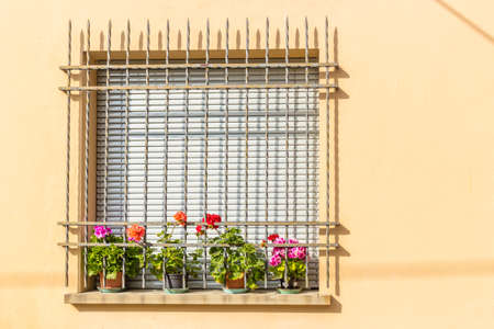 window with iron grating and flower pots: red and fuchsia geranium Stock Photo
