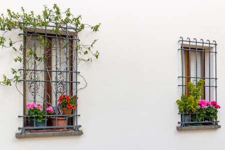 windows with iron grating and flower pots: red and fuchsia geranium