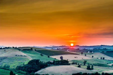 Organic farming in hill – sunset on lush vineyards and farmland in the quiet hilly countryside Banco de Imagens