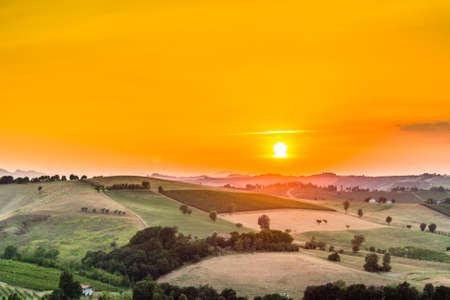 Organic farming in hill – sunset on lush vineyards and farmland in the quiet hilly countryside Stockfoto