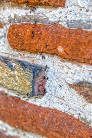 industrious: industrious ants forming a column on a brick wall Stock Photo
