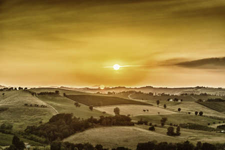 emilia: sunset on vineyards and farmland in the quiet hilly countryside
