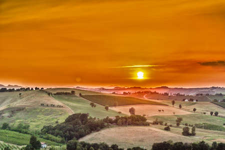 emilia romagna: Organic farming in hill – sunset on lush vineyards and farmland in the quiet hilly countryside Stock Photo