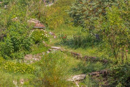venganza: La naturaleza toma venganza canibalizar y que cubre los restos de una antigua casa
