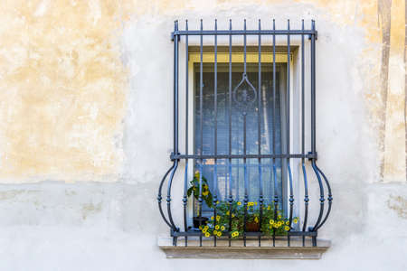 grates: window with vintage black railings and pots of yellow flowers, a little sunflower and some calibrachoa million bells