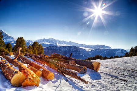 sunny day: Sawn tree trunks in the snow in front of a panorama of snowy peaks on a bright sunny day in winter in Dolomites Alps