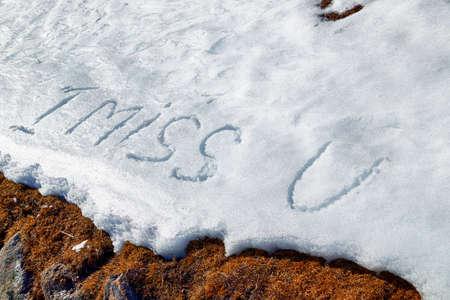 frase: Echo de menos U, frase escrita en letras mayúsculas en la nieve blanca congelada mientras malezas marrones y musgo en el primer plano