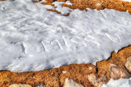 oracion: Echo de menos U, frase escrita en letras may�sculas en la nieve blanca congelada mientras malezas marrones y musgo en el primer plano