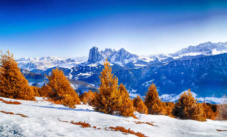 conifers: White snowy Dolomites mountains with rocks, snow-capped peaks and green conifers in winter Stock Photo