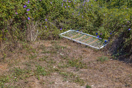 sprung: bedspring left in the midst of the weeds and garbage and purple flowers Stock Photo