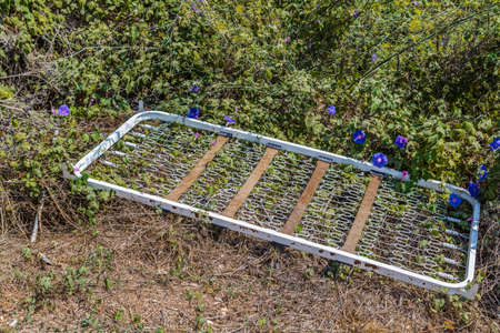 midst: bedspring left in the midst of the weeds and garbage and purple flowers Stock Photo