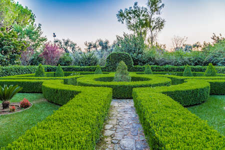 sunset on the hedges of an Italian garden in Italy 스톡 콘텐츠