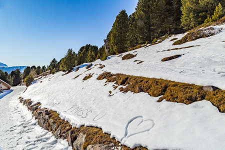 i miss you: love sentences written in the snow with green conifers in the background on Dolomites Alps: I miss you, hughs and kisses, heart Stock Photo
