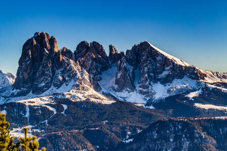 conifers: panorama of the Dolomites with snow-capped peaks and conifers Stock Photo