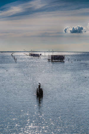 fishing huts: fishing huts with balance netfish and seagull on pole in the lagoon of the valleys of Comacchio in Emilia Romagna