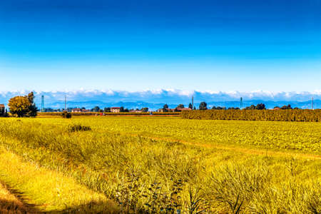 po valley: the peaceful silence of the fields in the Emilia Romagna region in the lower Po valley in Italy while the hills are the background Stock Photo
