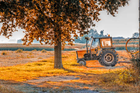 tiring: an old tractor is resting after a tiring day in the shade of a tree in the Italian countryside while the summer sun is setting