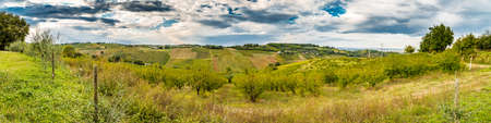 harmonious: Harmonious serenity of nature and farming on the slopes of the Apennines of Romagna, cultivated fields, orchards and ridges decorated with umbrella pines and cypresses Stock Photo