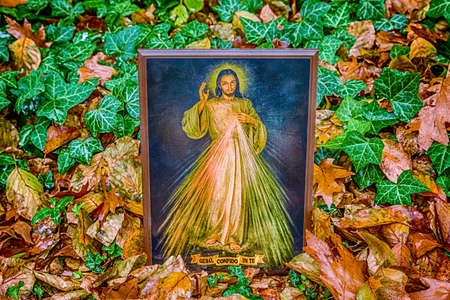 christian trust: an icon with the picture of the Merciful Jesus among fallen leaves in Autumn: the translation of the Italian writing on bottom is Jesus, I trust in you