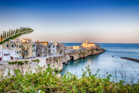 sea cliff: Vieste in Italy, an old Town on sea cliff and beaches: ancient houses and church