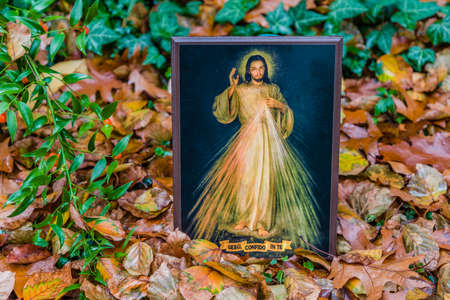 the merciful: an icon with the picture of the Merciful Jesus among fallen leaves in Autumn: the translation of the Italian writing on bottom is Jesus, I trust in you