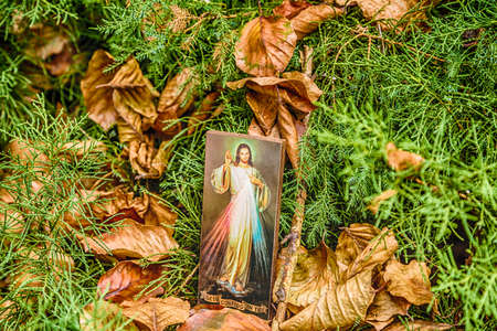 devotions: an icon with the picture of the Merciful Jesus among fallen leaves in Autumn: the translation of the Italian writing on bottom is Jesus, I trust in you